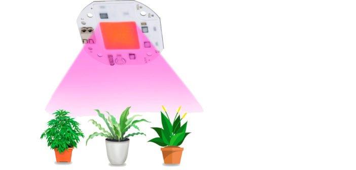 Ratgeber für COB LED Grow Light.
